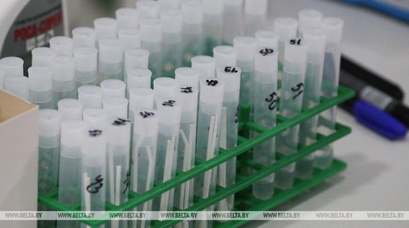 Over 31,000 COVID-19 tests performed in Belarus