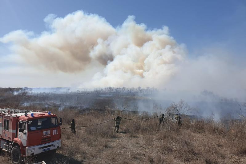 Пожар произошел на территории природного парка в Туркестанской области