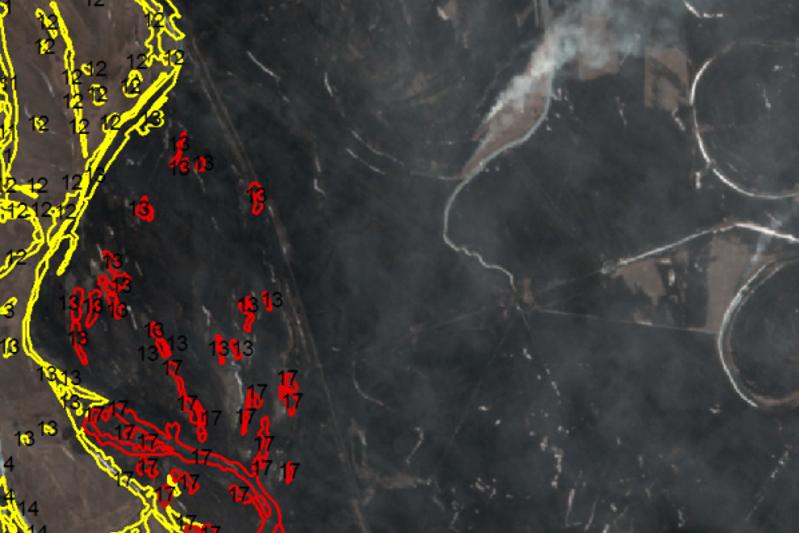 Космический мониторинг помог потушить лесной пожар в Павлодарской области