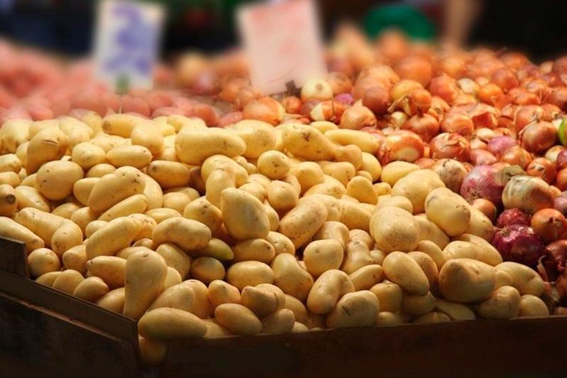 Минсельхоз Казахстана сообщил о квотном режиме экспорта сельхозпродукции