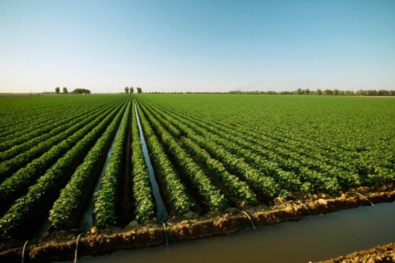 Площадь орошаемых сельхозземель за 10 лет будет увеличена в два раза