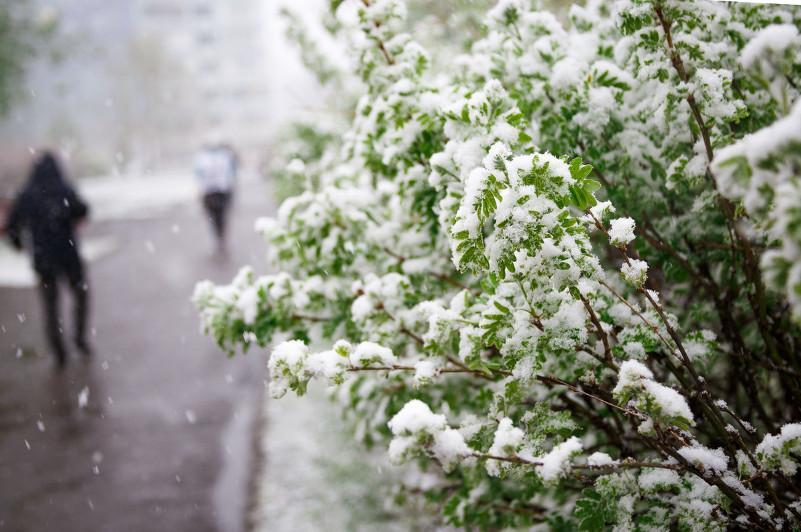国家气象总局公布未来3天天气预报