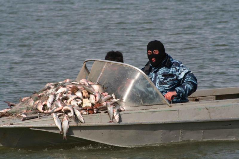 В Атырауской области проходит рыбоохранная акция