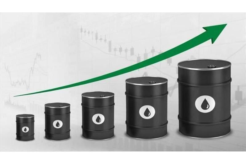 Oil prices up with surprise decline in US crude stocks