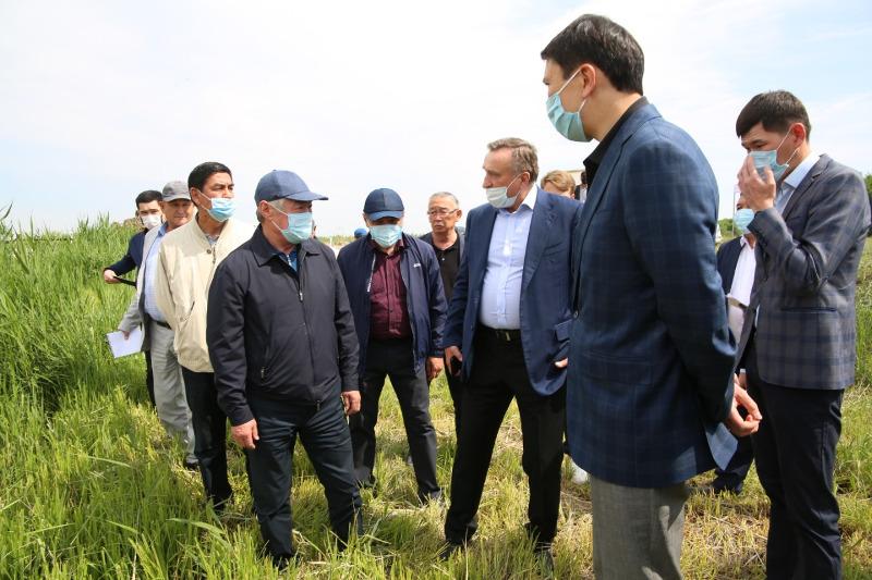 Каскадное водохранилище появится в Жамбылской области