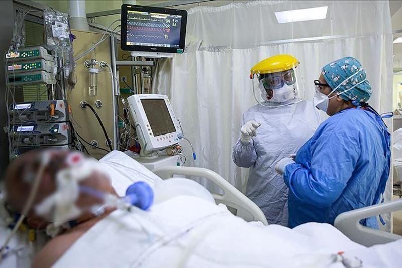 Confirmed Coronavirus Cases Hit 5 Million Worldwide | Social