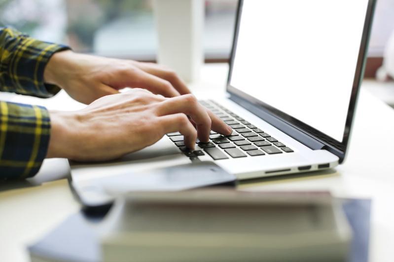 Какие услуги планируют оцифровать на бирже труда