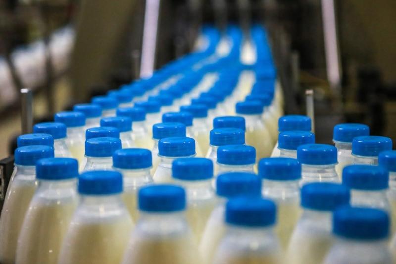 Минсельхоз планирует полностью закрыть вопрос с импортозамещением молока за пять лет
