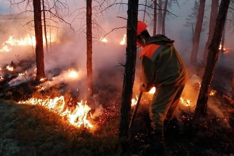 Лесные пожары охватили 13 тысяч га в России