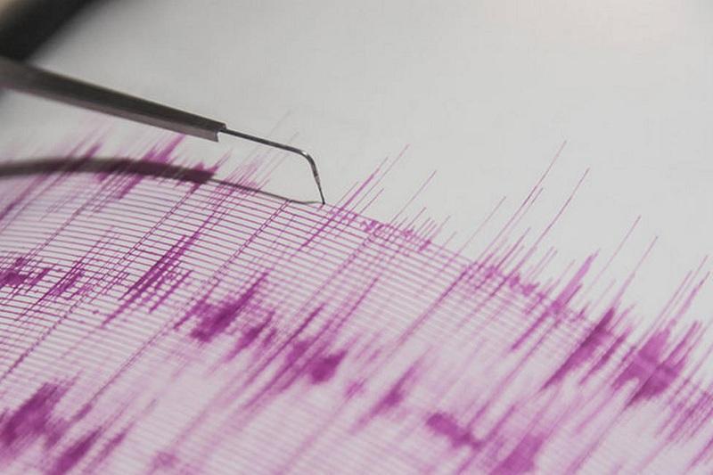 В 204 километрах от Алматы произошло землетрясение