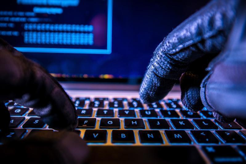 Более 2 млрд тенге ущерба от интернет-мошенничества выявили в Нур-Султане