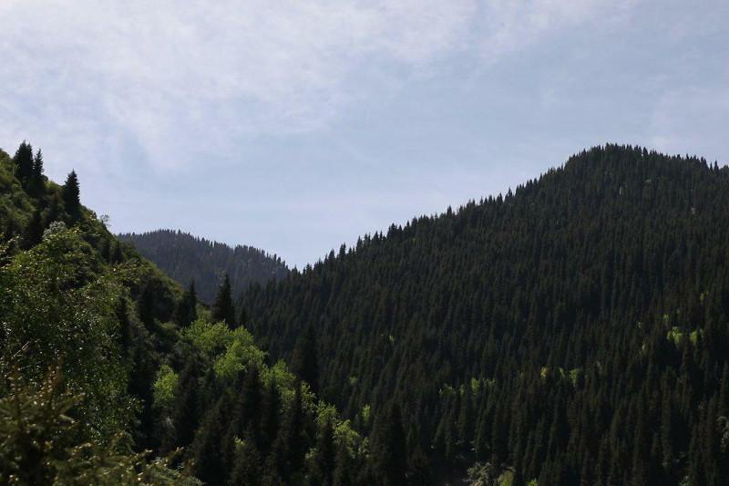 Нацпарки изменят в Казахстане: исчезнут шашлычные, появится больше троп