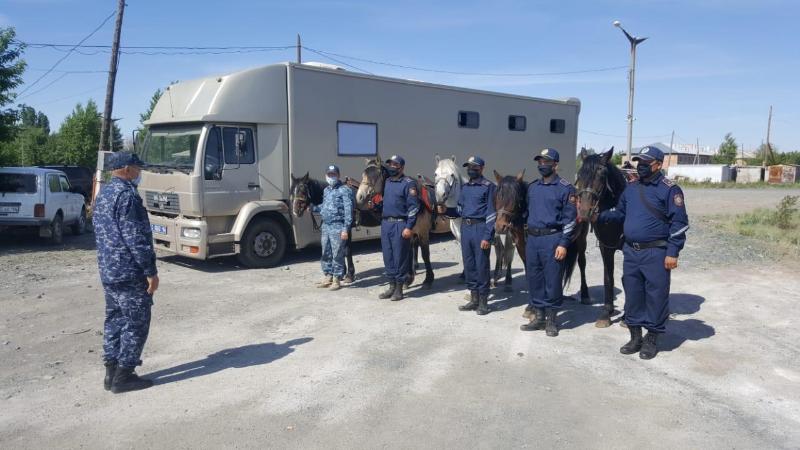 Полицейская кавалерия начала службу в Экибастузе