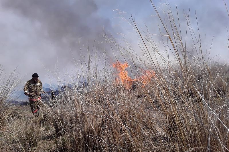 Два человека пострадали при возгорании сухой травы в ВКО