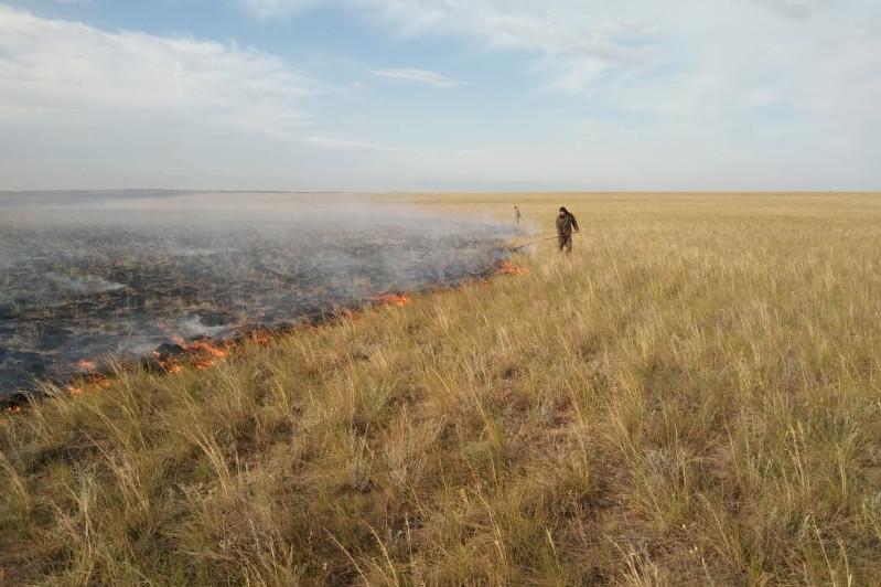 Крупное возгорание сухостояпроизошло в ВКО
