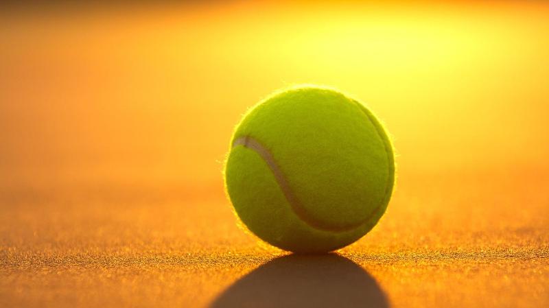 Болельщикам в Праге разрешили присутствовать на теннисном турнире