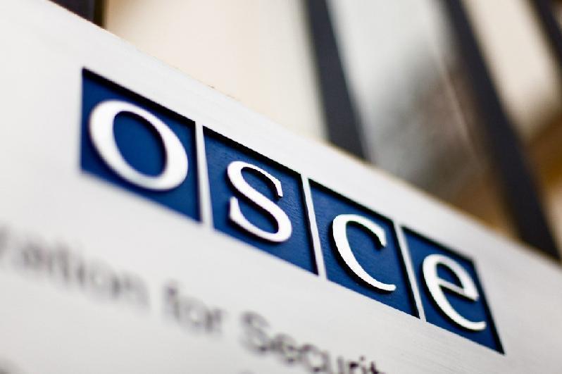 Депутаты Сената приняли участие в конференции Парламентской Ассамблеи ОБСЕ
