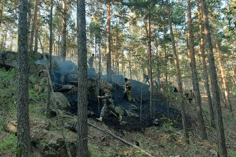 Более суток тушили лесной пожар в нацпарке «Бурабай»