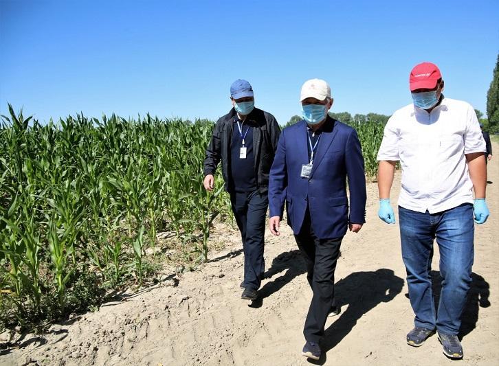 Бердибек Сапарбаев раскритиковал работу НИИ за неэффективное использование сельхозземель