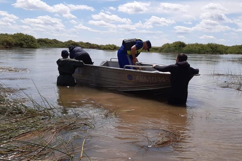 Пастух утонул при попытке найти лошадь в Акмолинской области