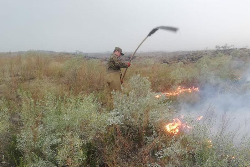 Степь горит в трех районах Восточного Казахстана
