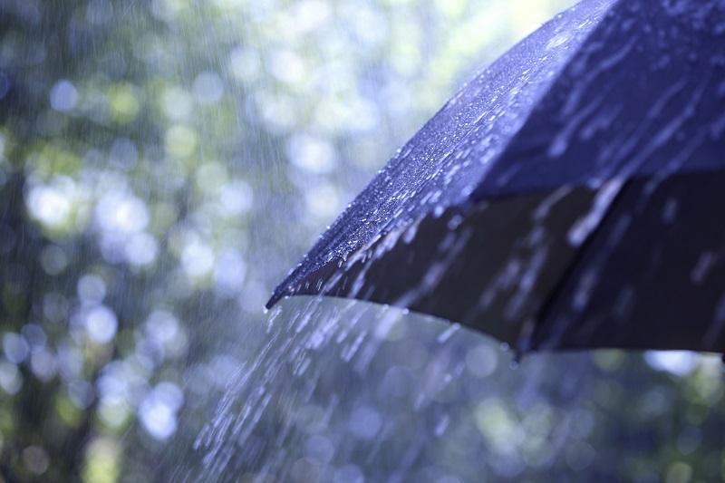 Дождь и сильный ветер ожидаются в двух областях Казахстана