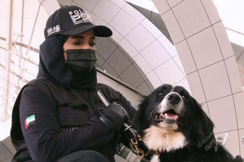 K9 police dogs detect COVID-19