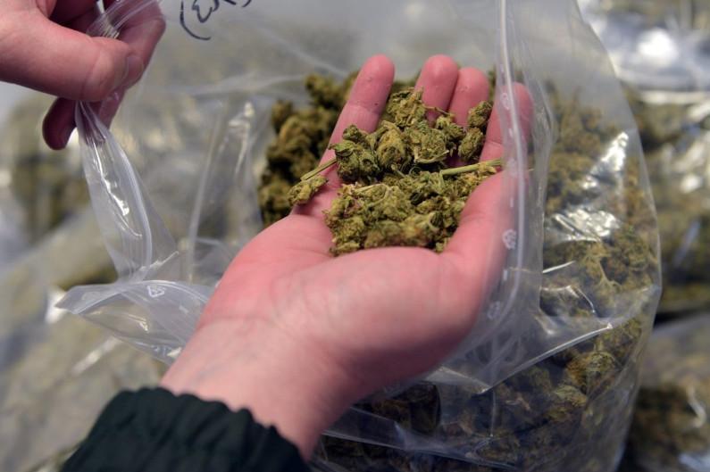 Крупную партию наркотиков изъяли полицейские в Алматинской области