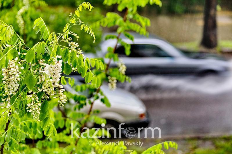 Дожди с грозами ожидаются в Казахстане 11 – 13 июля