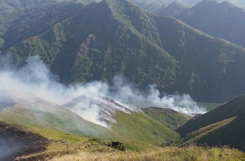 Пожар в лесной зоне потушили в ВКО