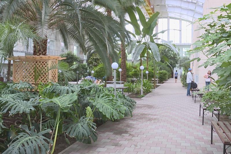 Капитальный ремонт провели в зимнем саду в Темиртау