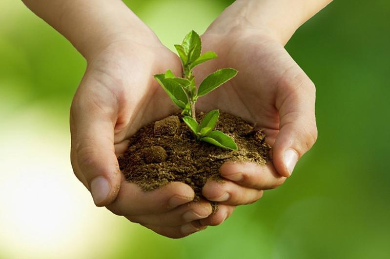 Евгений Лазарчук: Экологияға қамқорлықты бала кезден қалыптастыру керек