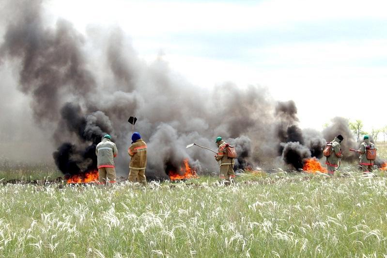 57 лесных и степных пожаров за двое суток произошло в Казахстане