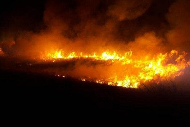 Large steppe fire eliminated in E Kazakhstan