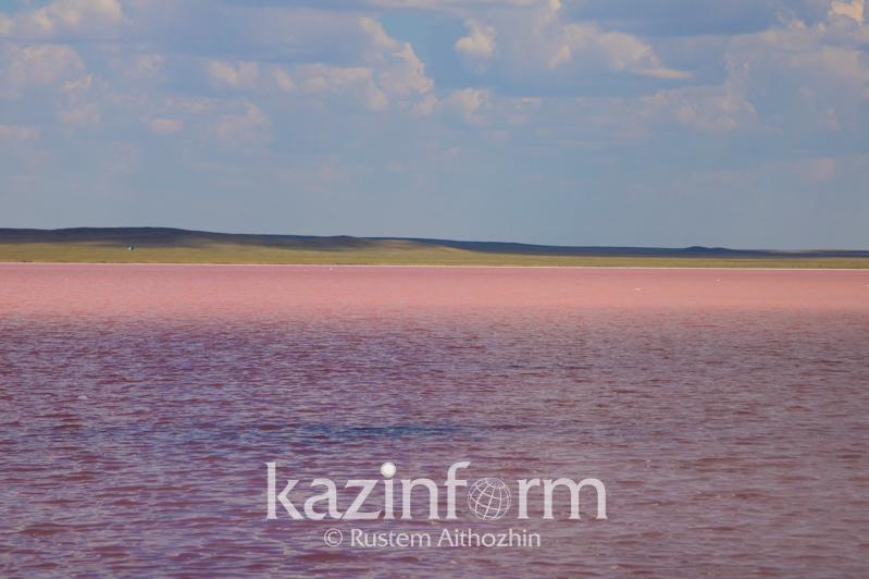 Три мобильных поста полиции охраняют розовое озеро Кобейтуз