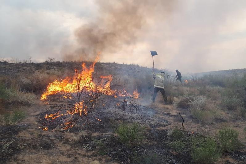 Бердибек Сапарбаев поручил усилить меры по профилактике природных пожаров