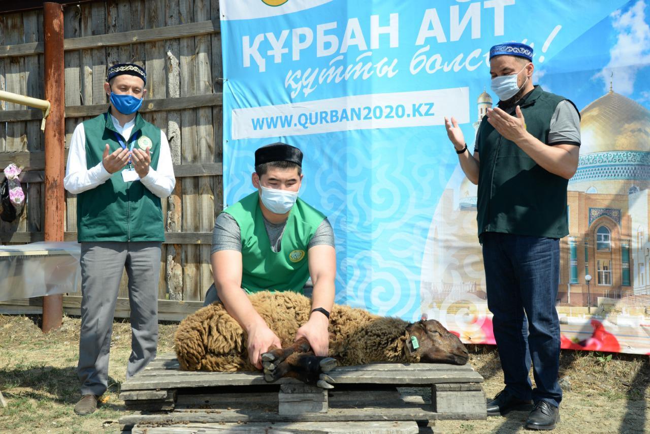 Құрбан айт мерекесінде Қарағанды облысында 1500-ге жуық мал құрбандыққа шалынды