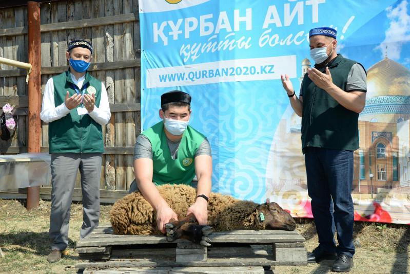 Итоги «Курбан-2020»: ДУМК распределило жертвенное мясо 81 301 семье