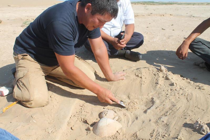 考古学家在阿克托别草原上发现古代男孩遗骸