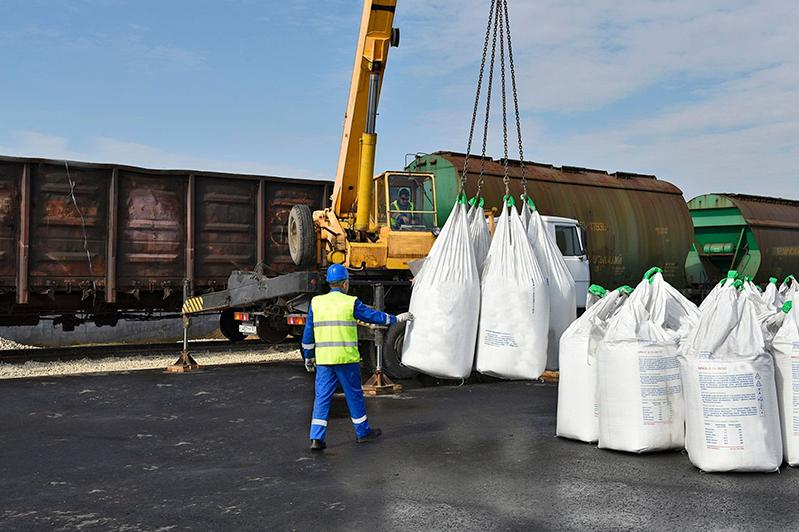 More Kazakhstani producers to export flax seeds to China