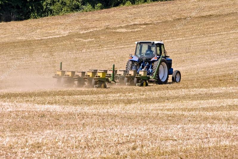 Урожайность зерновых 25 центнеров с гектара ожидают в агроформировании СКО
