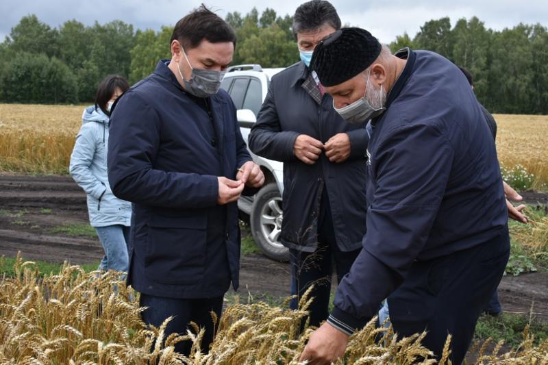 Социальные объекты и дороги ремонтируют в районах Акмолинской области