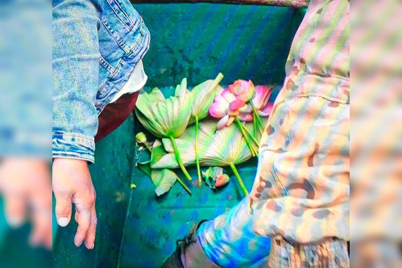Атырауда туристер Қызыл кітапқа енген тұңғиықгүлді жұлған