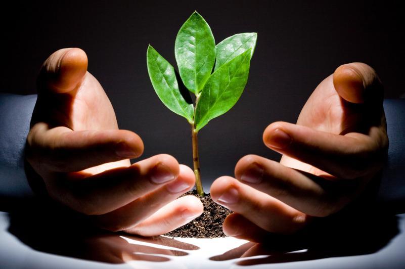 Пакет предложений по зеленому росту разработают в Казахстане
