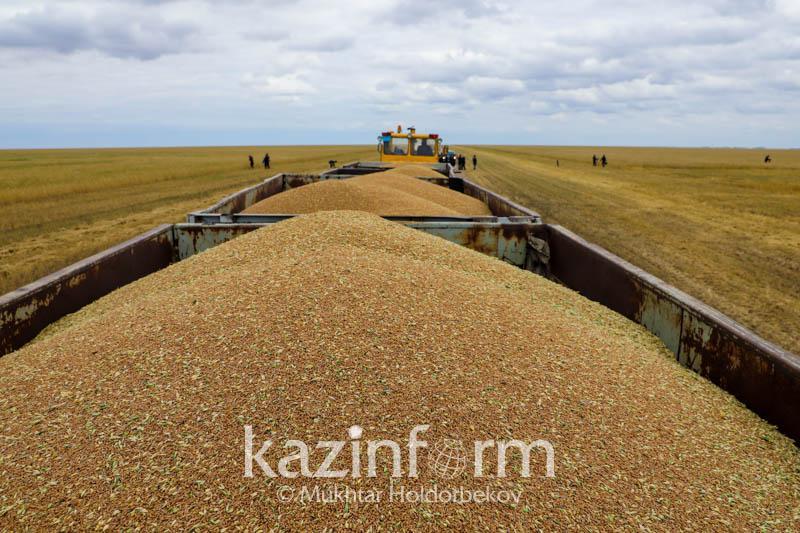 2019-2020年度哈萨克斯坦向中国出口小麦32万吨