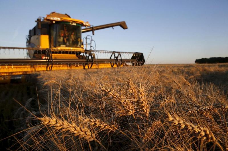 Прогноз по сбору урожаяозвучили вМинсельхозе РК