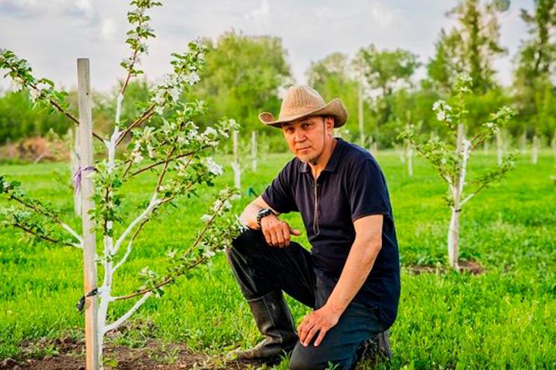 Яблоневые сады возрождает житель ЗКО