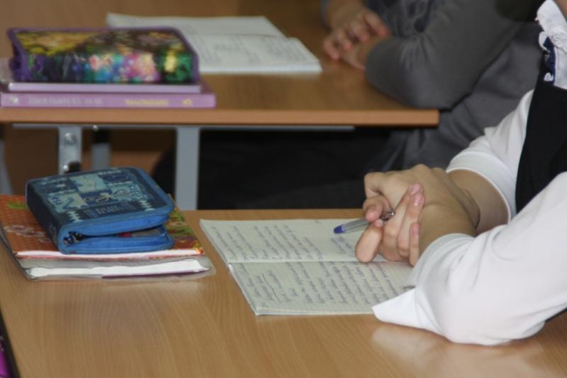 Две школы работают в штатном режиме в Алматы