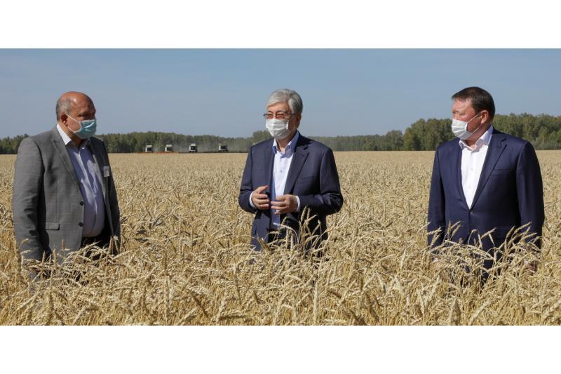 ҚР Президенті Солтүстік Қазақстандағы астық жинау науқанымен танысты