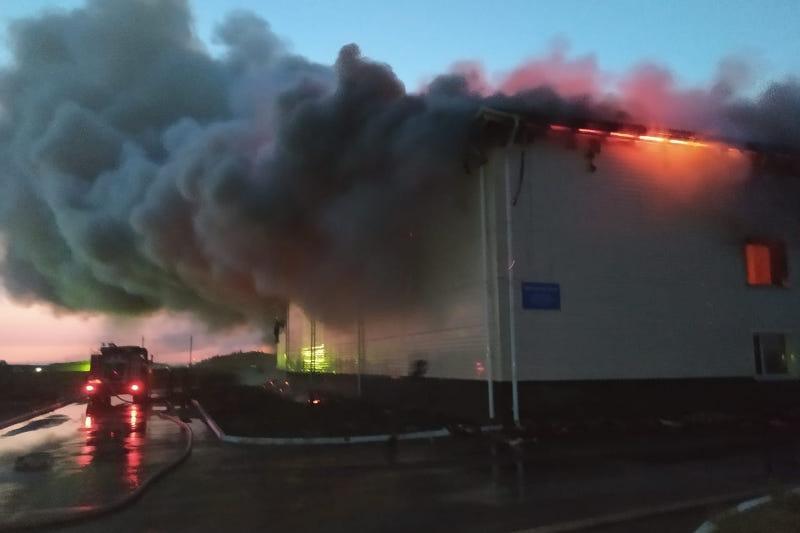 Крупный пожар в ТОО «Экопак Астана»: назначена экспертиза